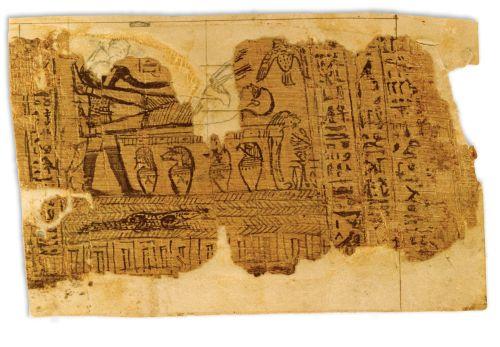 Egyptian papyri [n.d.]