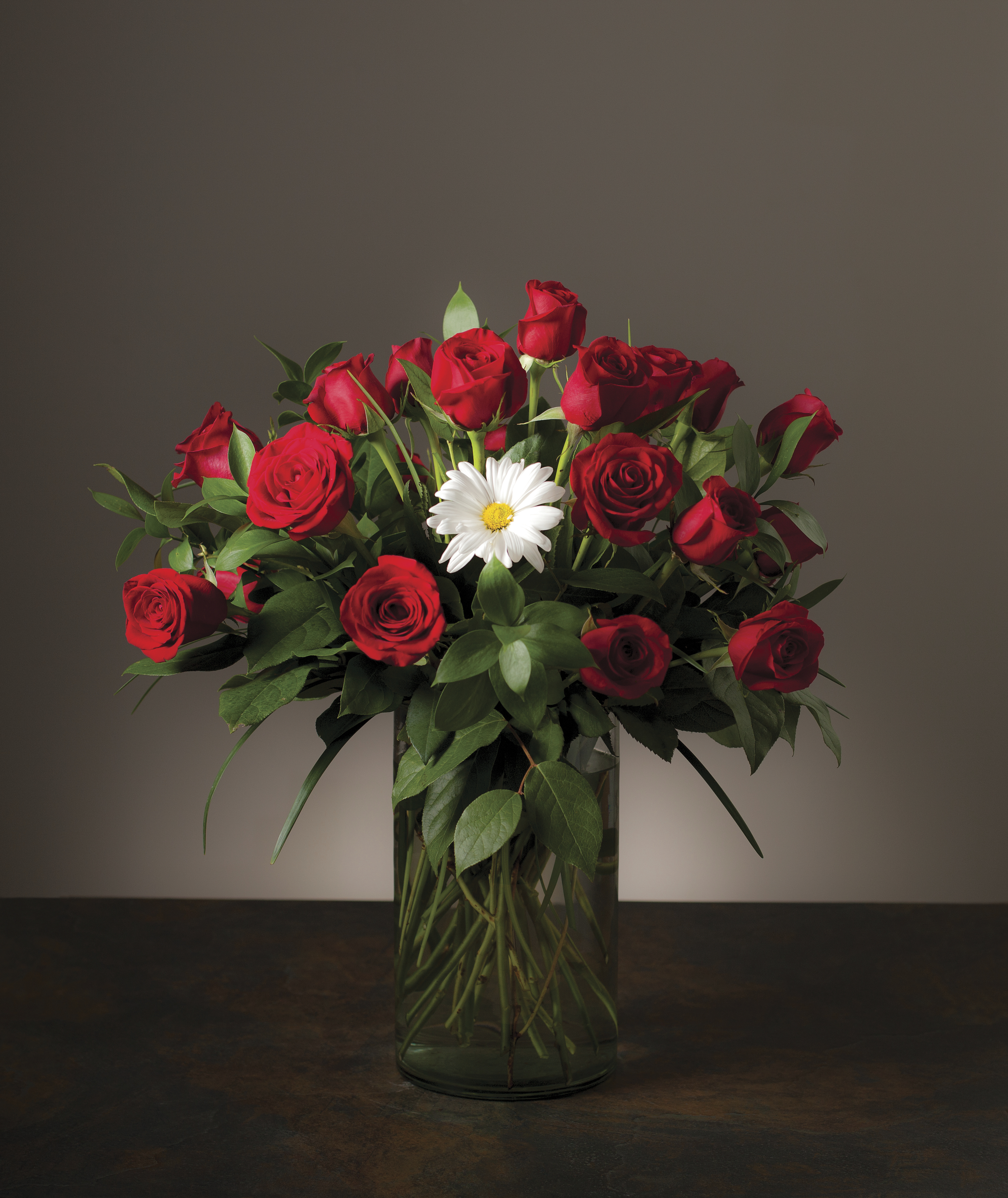 A white daisy in a vase full of red roses.