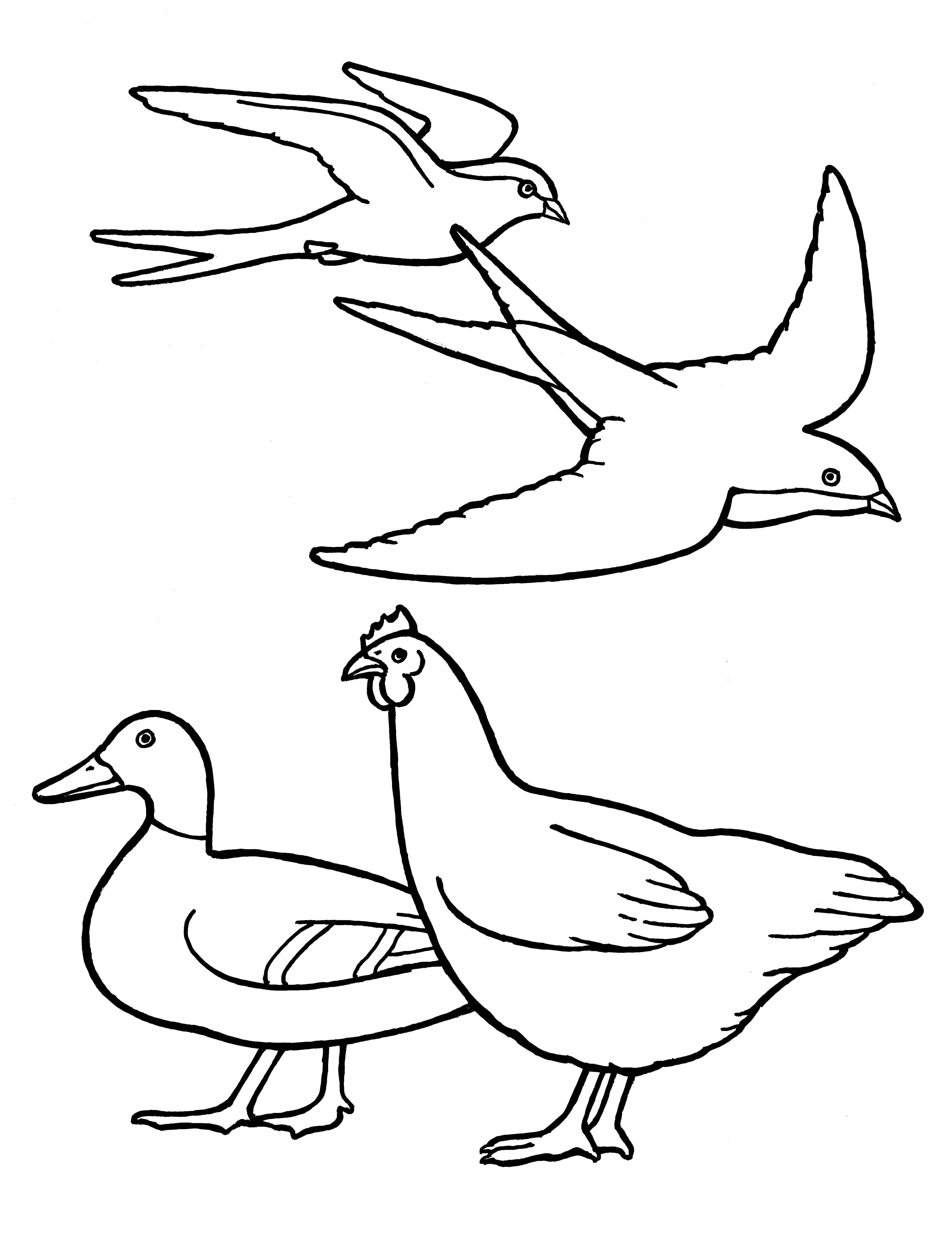 A line drawing of birds from the nursery manual Behold Your Little Ones (2008), page 35.