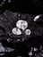 diamonds among rocks