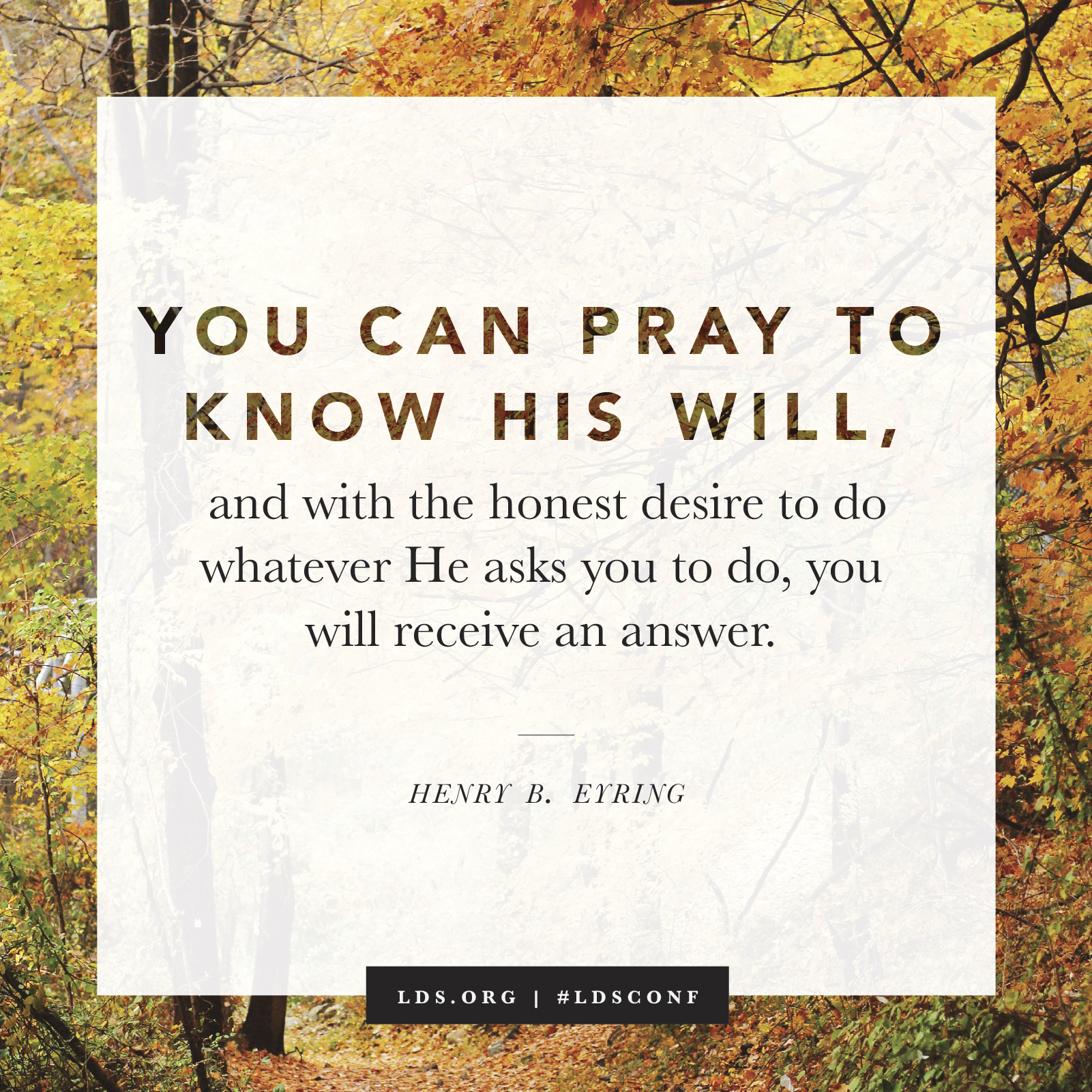 """""""You can pray to know His will, and with the honest desire to do whatever He asks you to do, you will receive an answer."""" —President Henry B. Eyring, """"You Are Not Alone in the Work"""""""