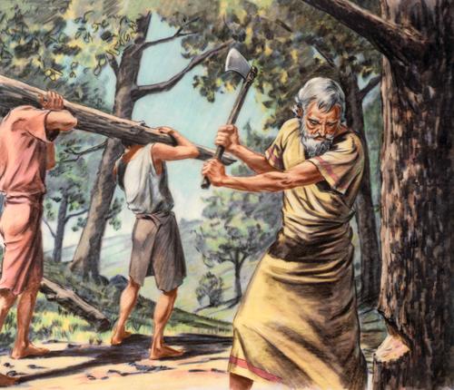 Noah cutting trees
