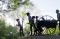 Far West, Missiouri: Pioneer Sculpture