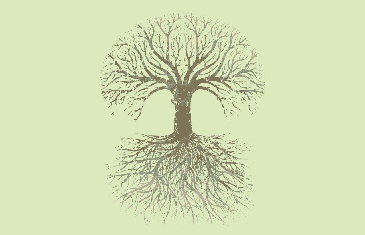 Árbol Familiar