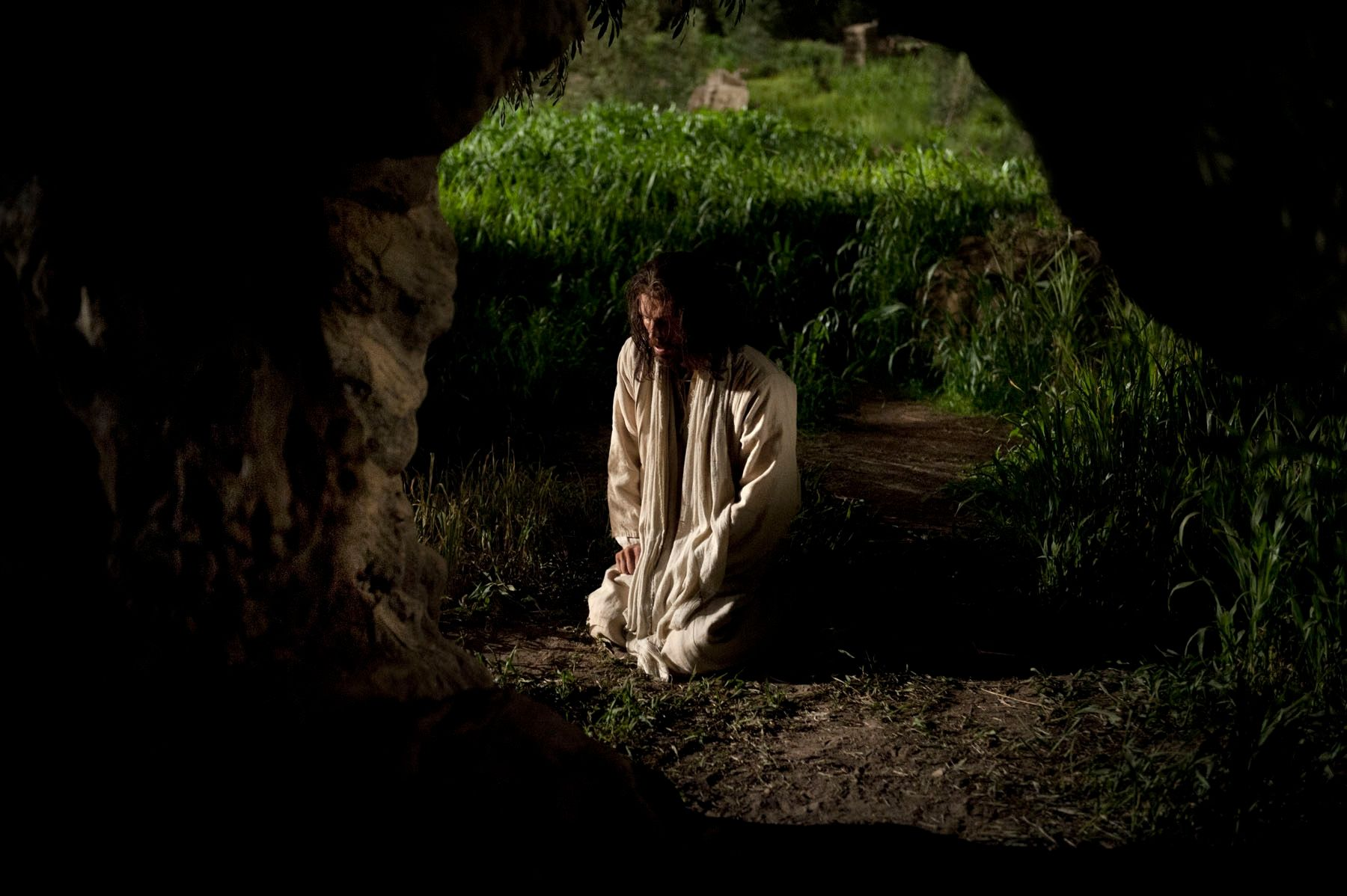 Jesus returns to the garden again to continue to pray and suffers great pain.