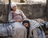 Luke 1:39–55, Mary visits her cousin Elisabeth