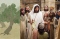 tree image and scene of Jesus among the people