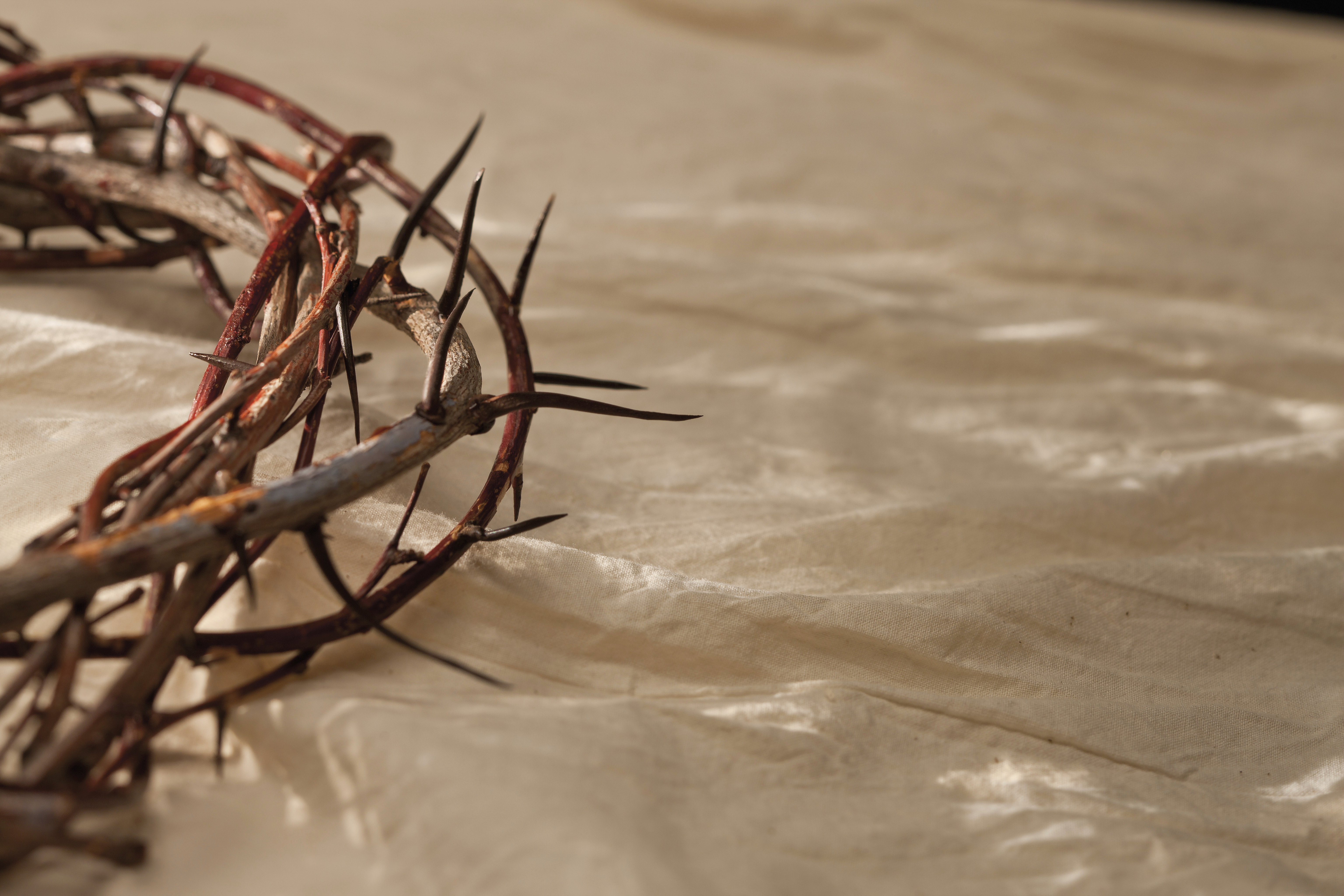 A crown of thorns resting on a piece of white linen.