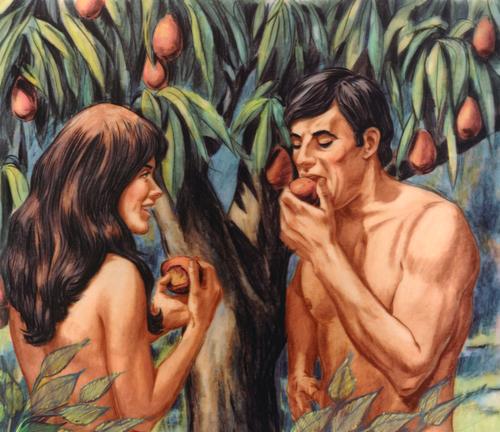 Adam eating fruit