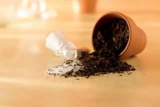 Salt Mixed With Dirt