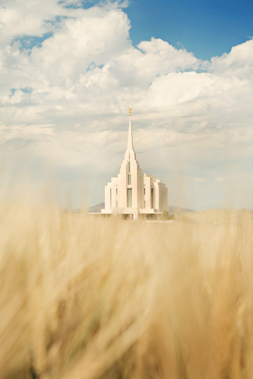 The entire Rexburg Idaho Temple, including a wheat field.