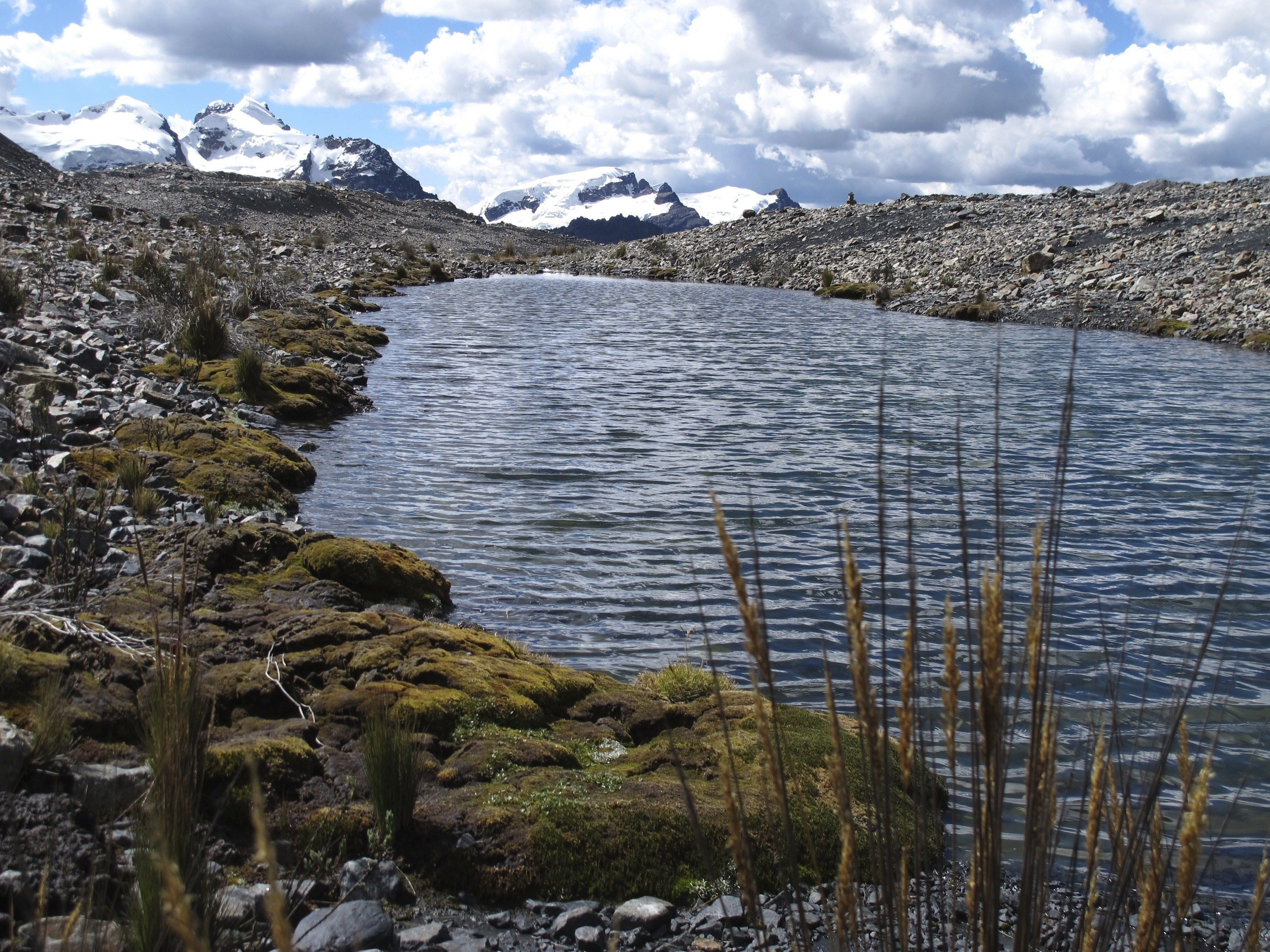 The Andes Mountains in the background with a lake in front.