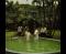 Baptism being performed