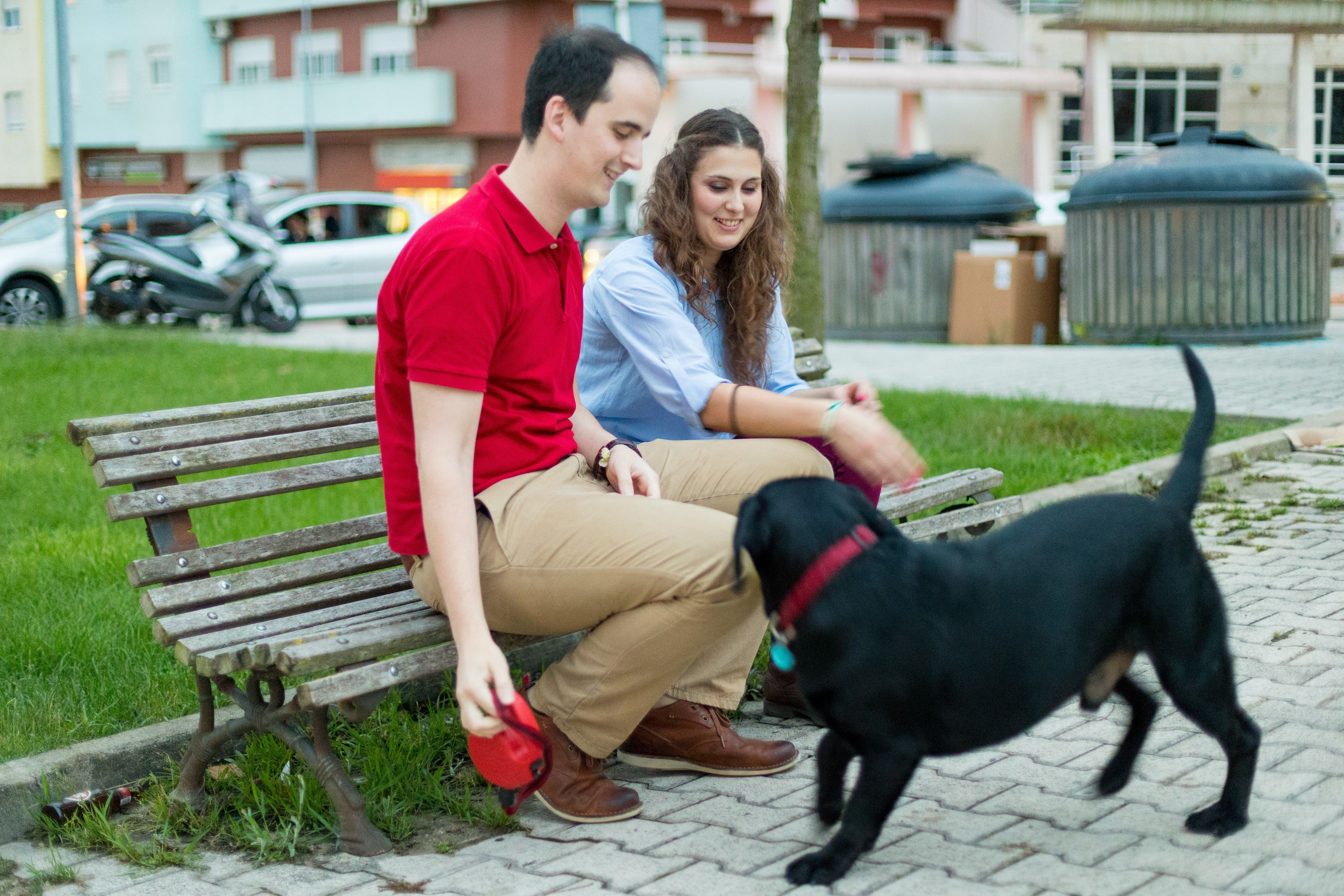 A young couple from Portugal sits on a bench and plays with a dog.