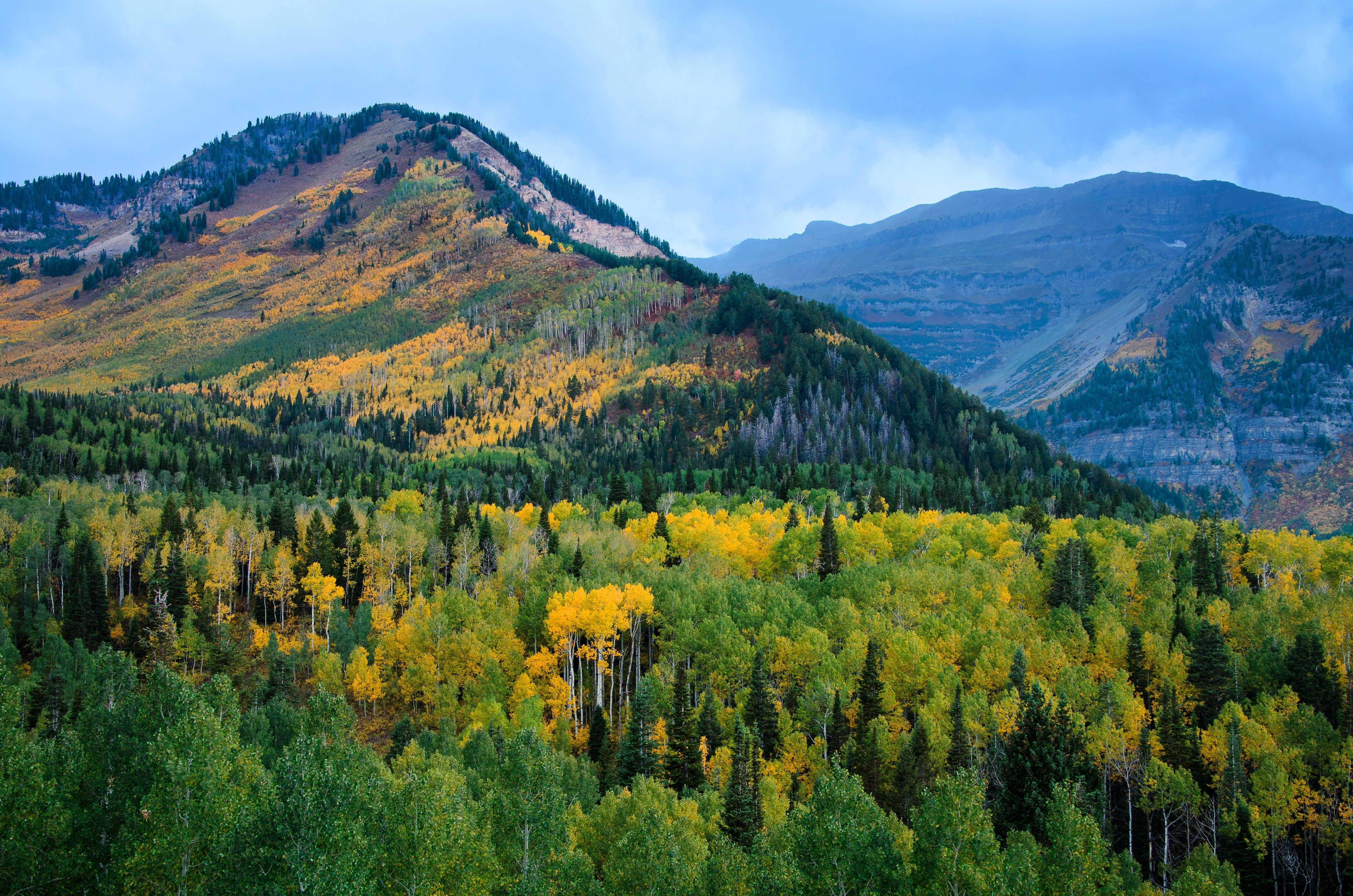 The Alpine Loop mountains covered in trees during the autumn season.