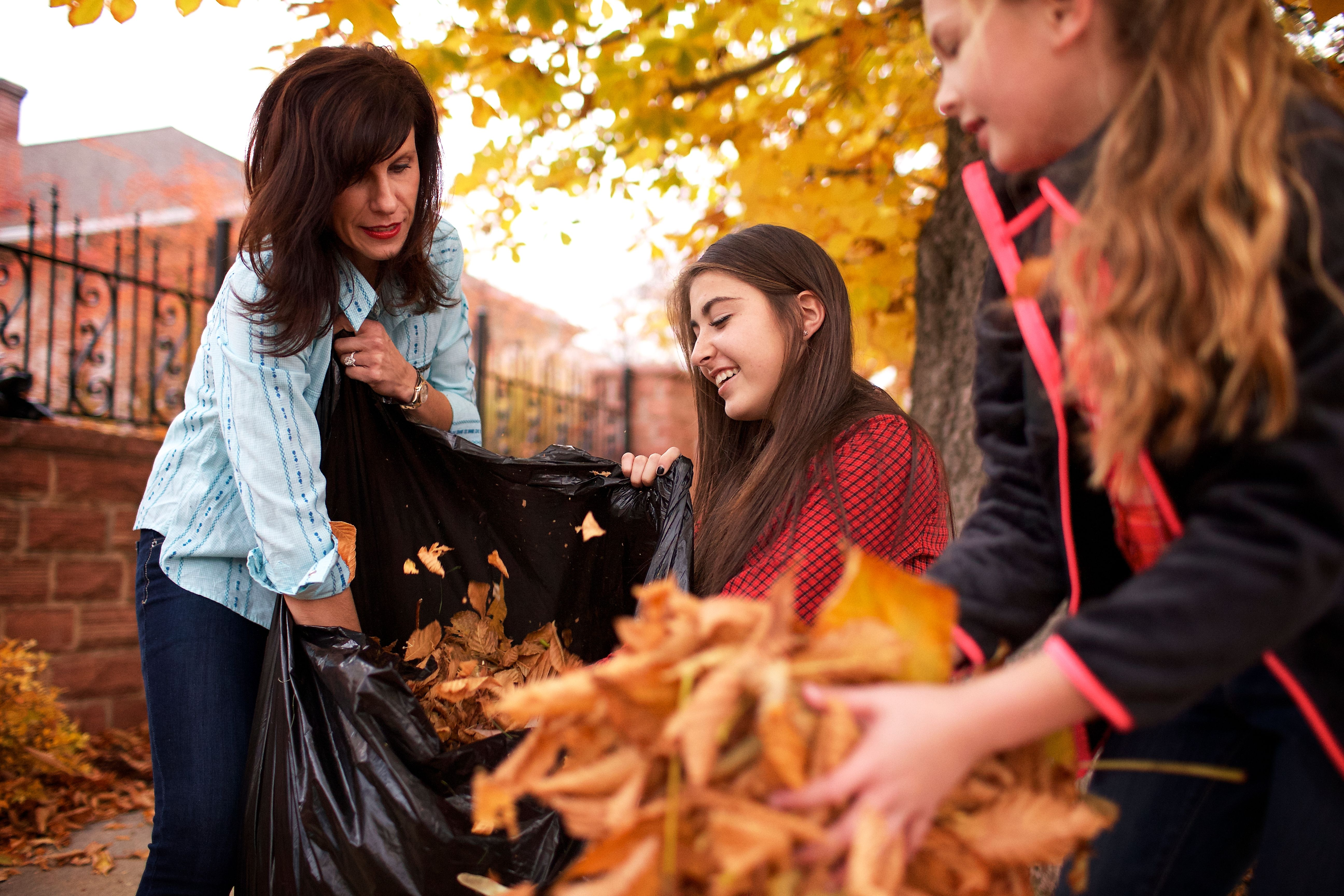 A family works together to gather and throw away leaves.