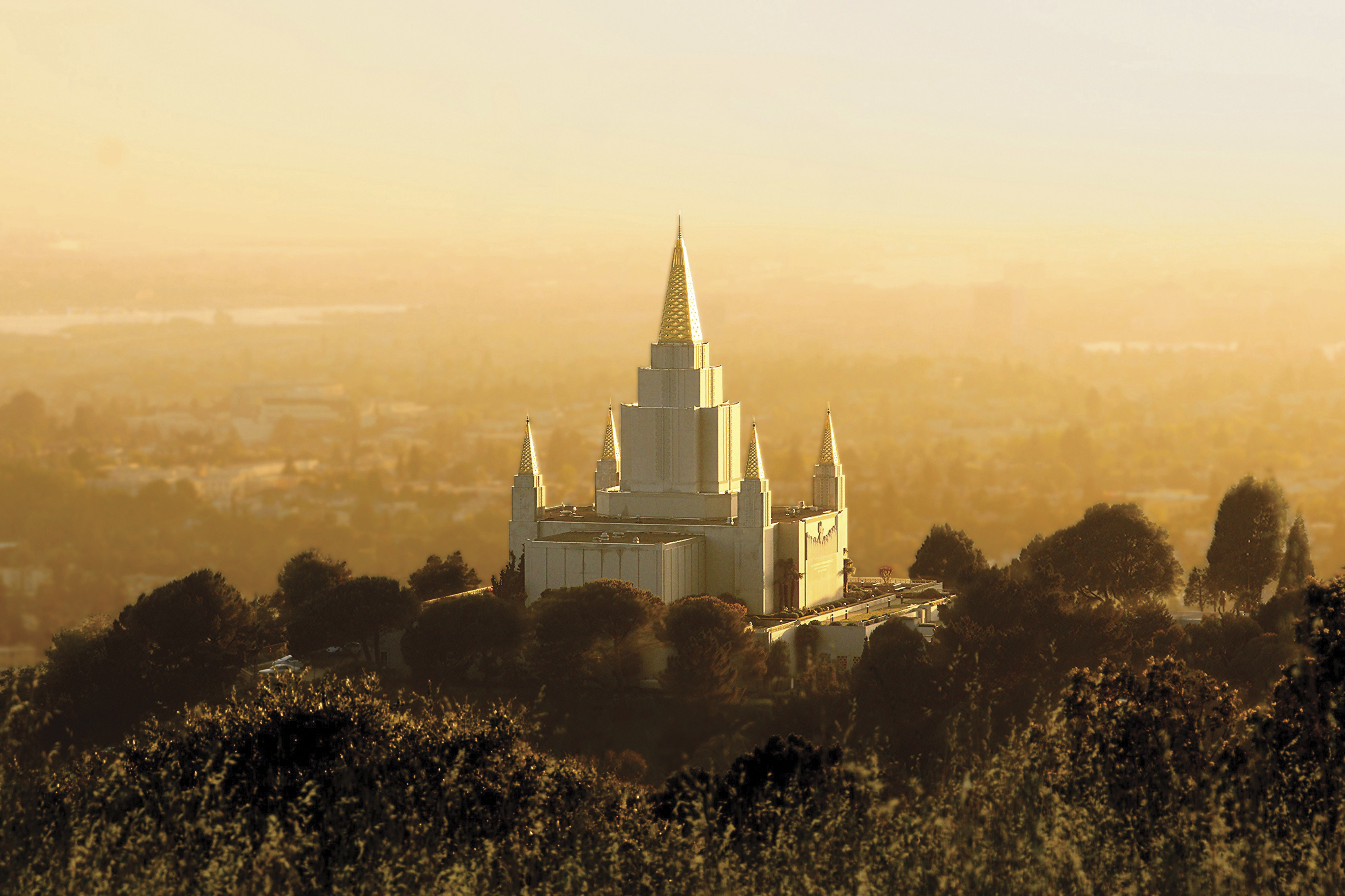 The Oakland California Temple at sunset, including scenery.