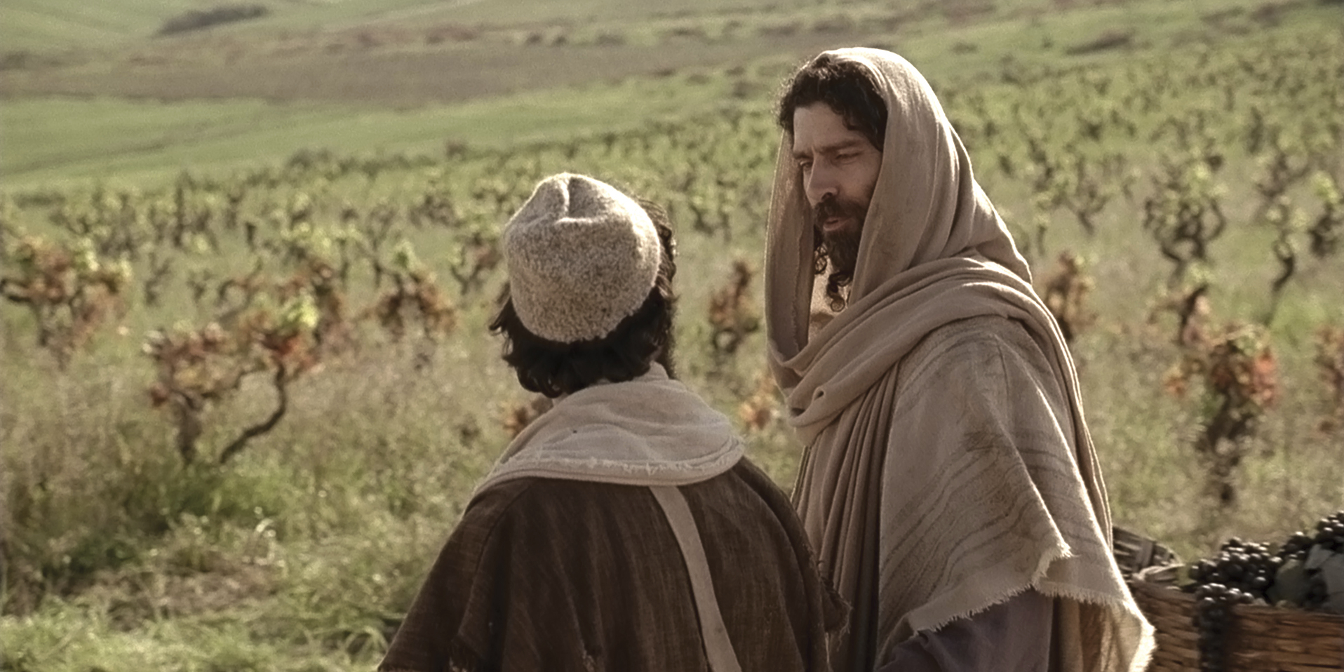 The master of the vineyard in Jesus's parable.