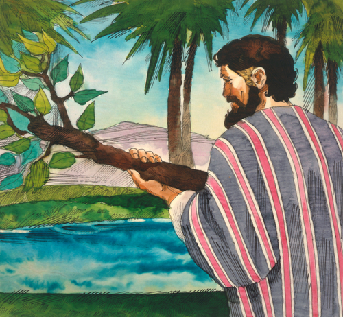 Moses with tree