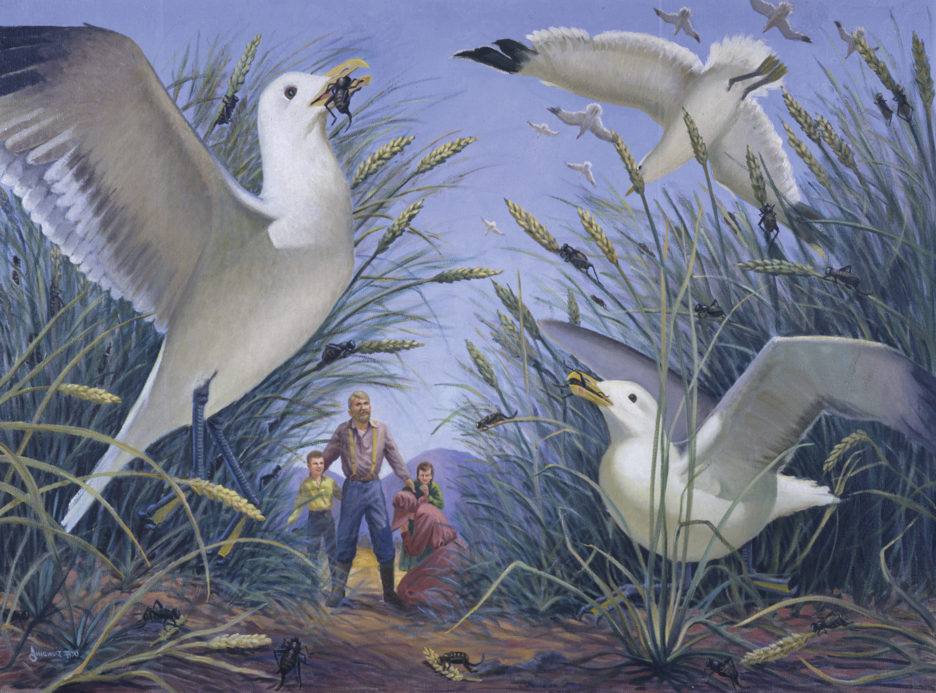 Coming of the Gulls, by Goff Dowding