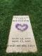 Brigham Reneer headstone
