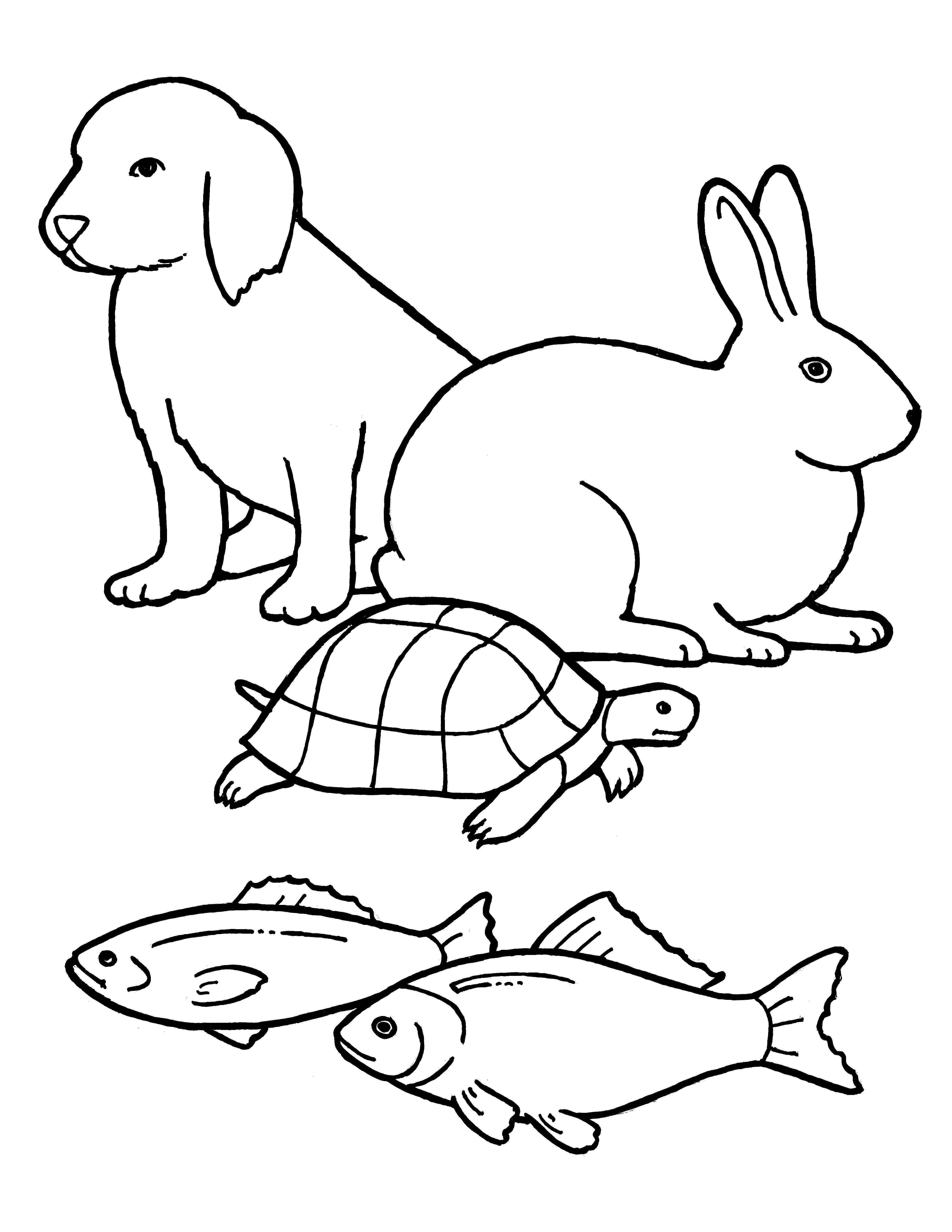 A line drawing of animals from the nursery manual Behold Your Little Ones (2008), page 35.