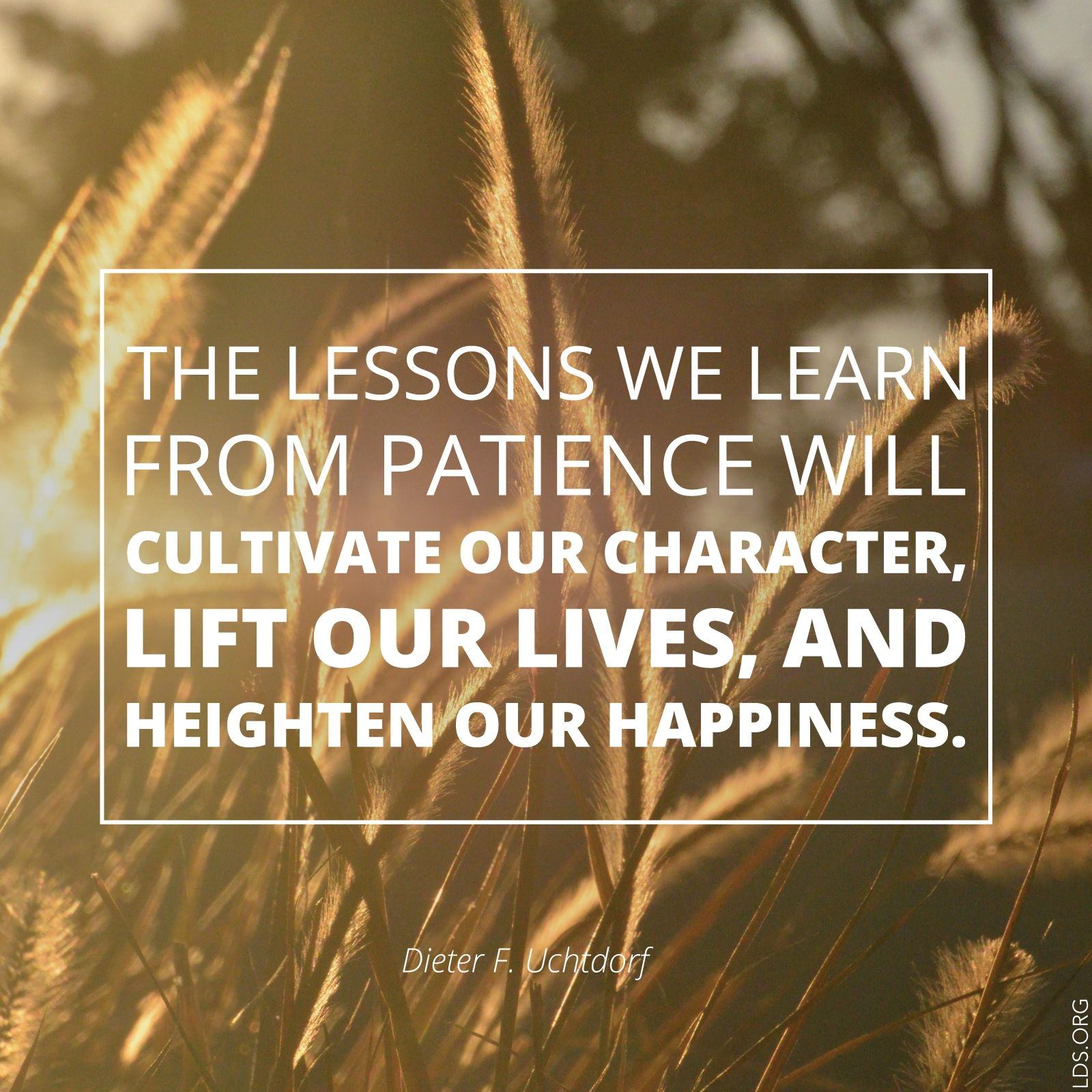 """""""The lessons we learn from patience will cultivate our character, lift our lives, and heighten our happiness.""""—President Dieter F. Uchtdorf"""