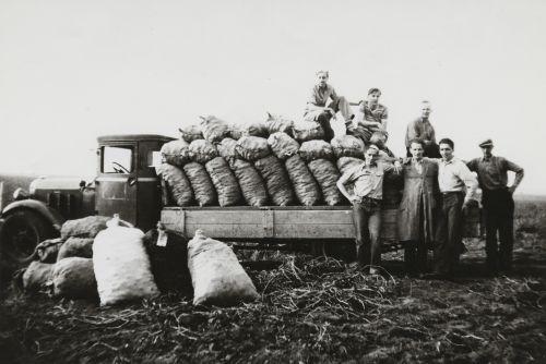 Photographs [ca. 1947-1949]
