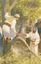 Zacchaeus, make haste, and come down