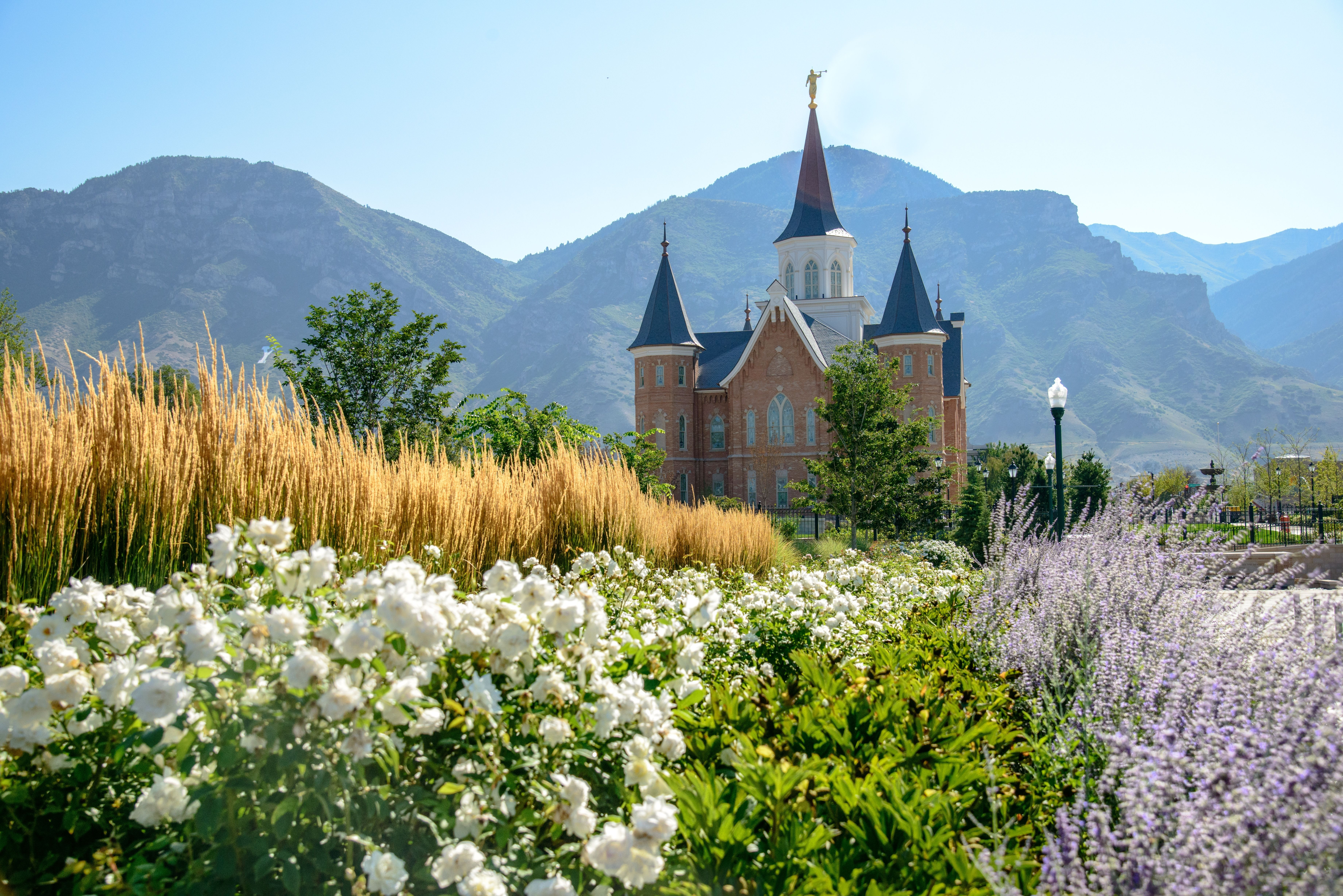 Vegetation around the Provo City Center Temple, with mountains in the background.