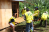 Building temporary shelters project after Typhoon Haiyan.