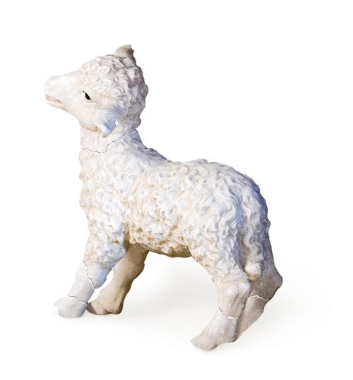 A Broken Sheep and a Contrite Spirit