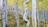 휘어진 나무 몸통