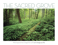 """A photograph of the Sacred Grove bordered by the words, """"The Sacred Grove: What happened here changed the world. Let it change your life."""""""