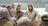 John 10:1–18, Jesus teaches about His sheep