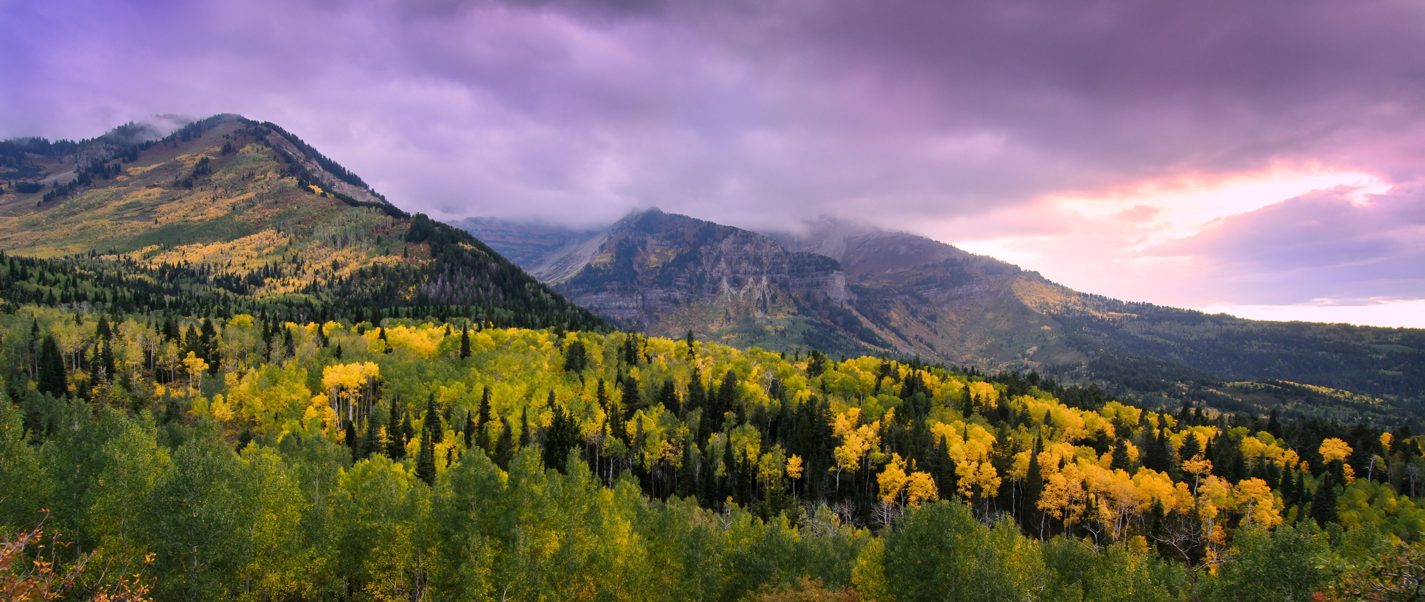 Mountains with yellow trees in the autumn.