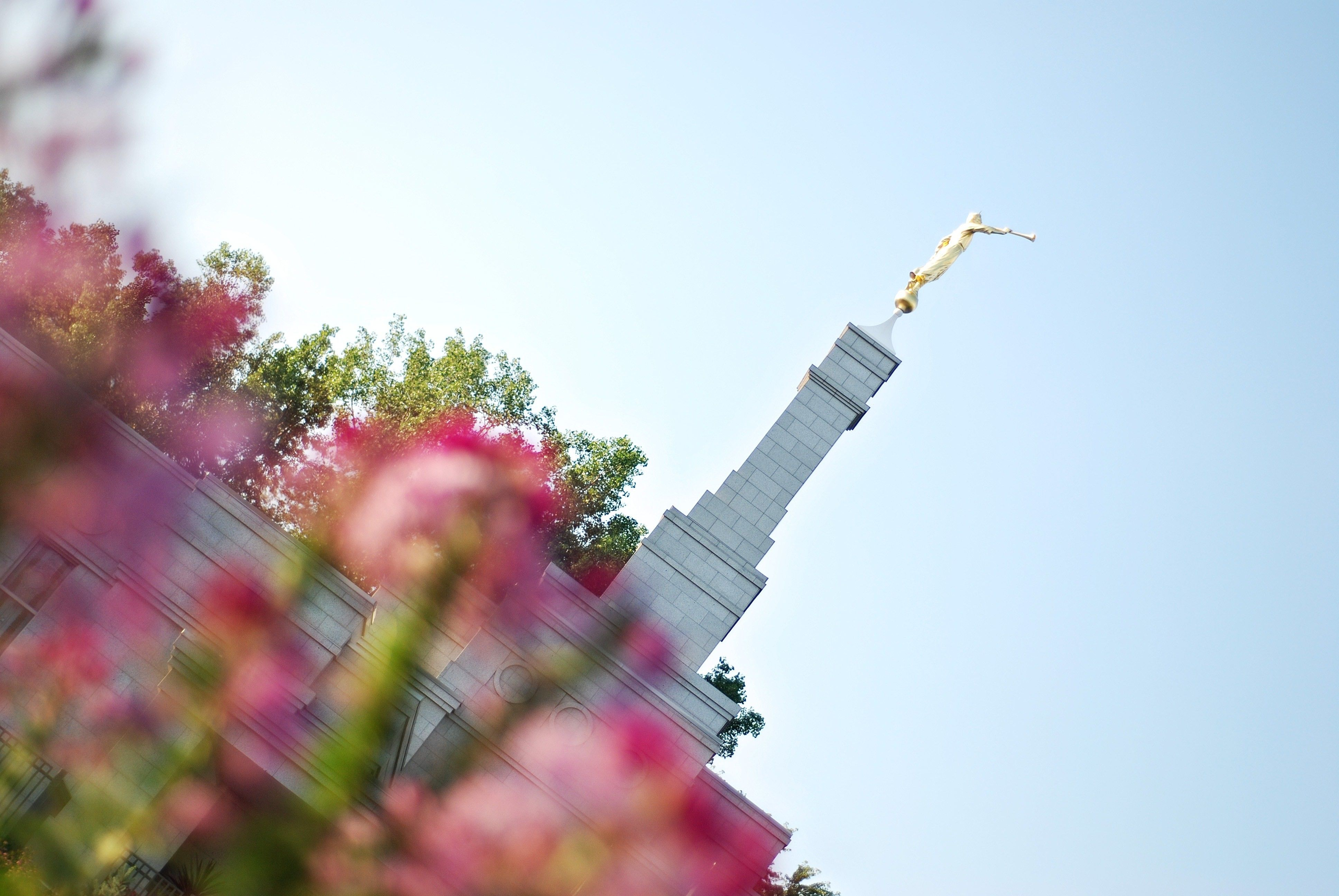 The St. Paul Minnesota Temple spire, including scenery.