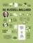 infographic about President Ballard