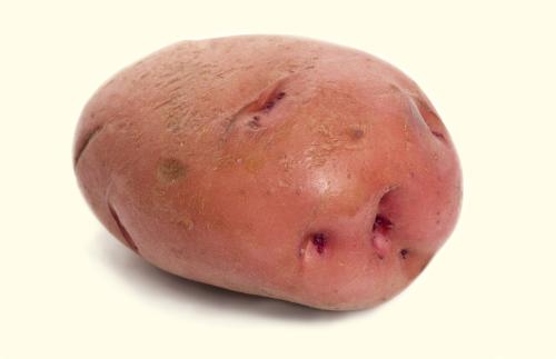 A Potato For the Teacher