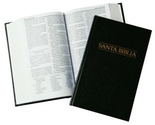 Scriptures. Bible