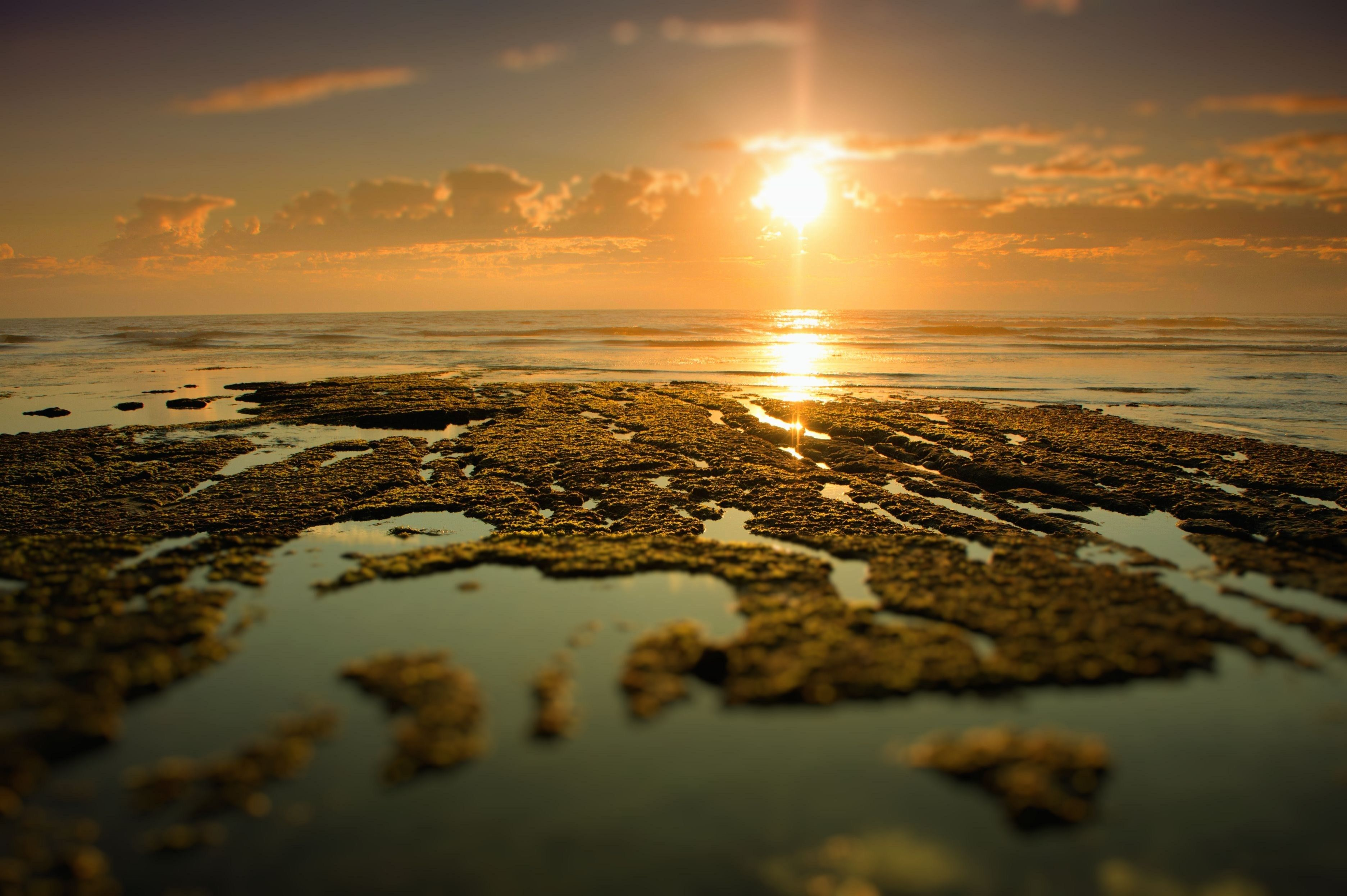 The sun sets over a tide pool.