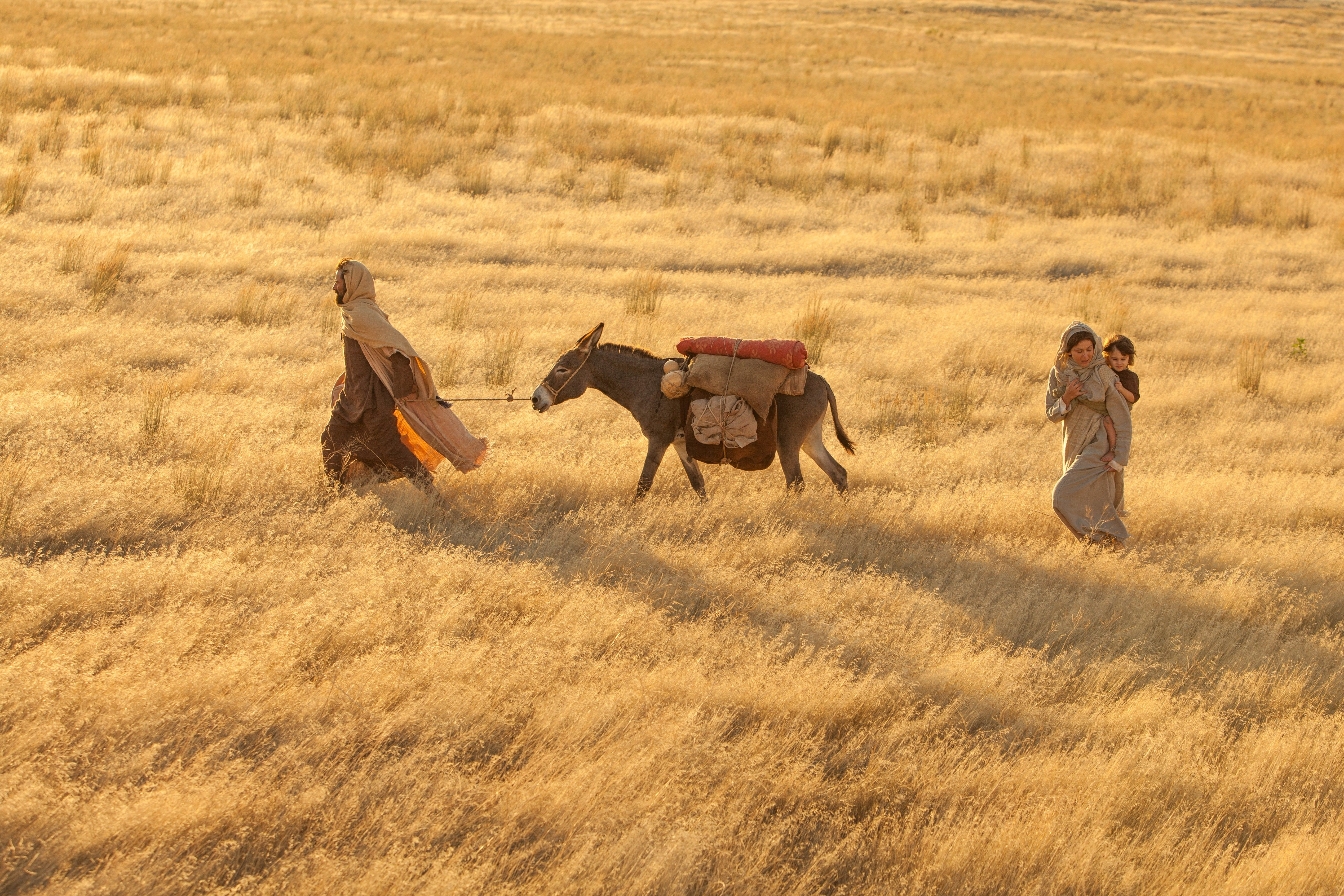 Mary and Joseph flee to Egypt to save Jesus' life.