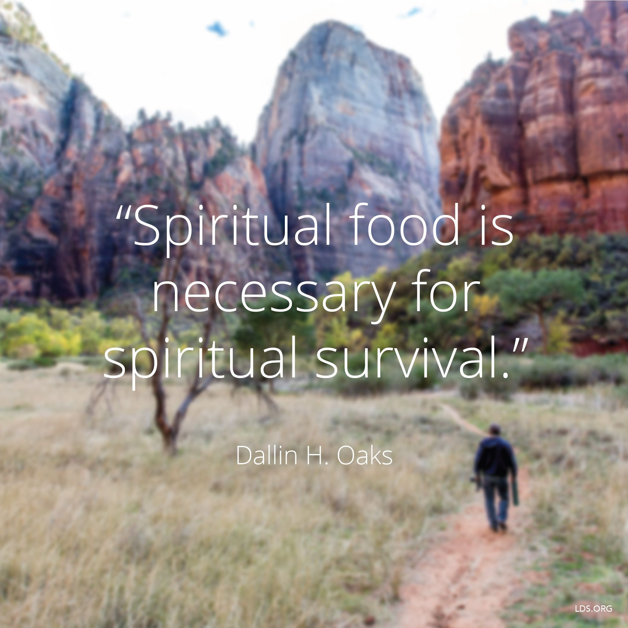 """""""Spiritual food is necessary for spiritual survival.""""—Elder Dallin H. Oaks, """"The Parable of the Sower"""""""