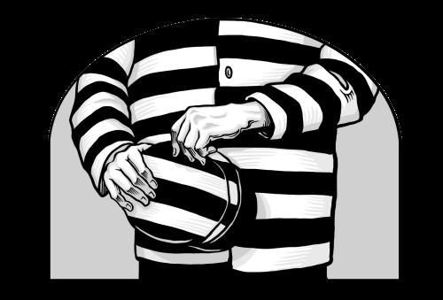 Saints V2 illustration - A Prisoner for Conscience sake, polygamy