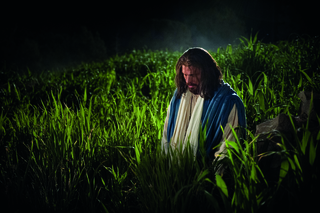 The Savior in Gethsemane