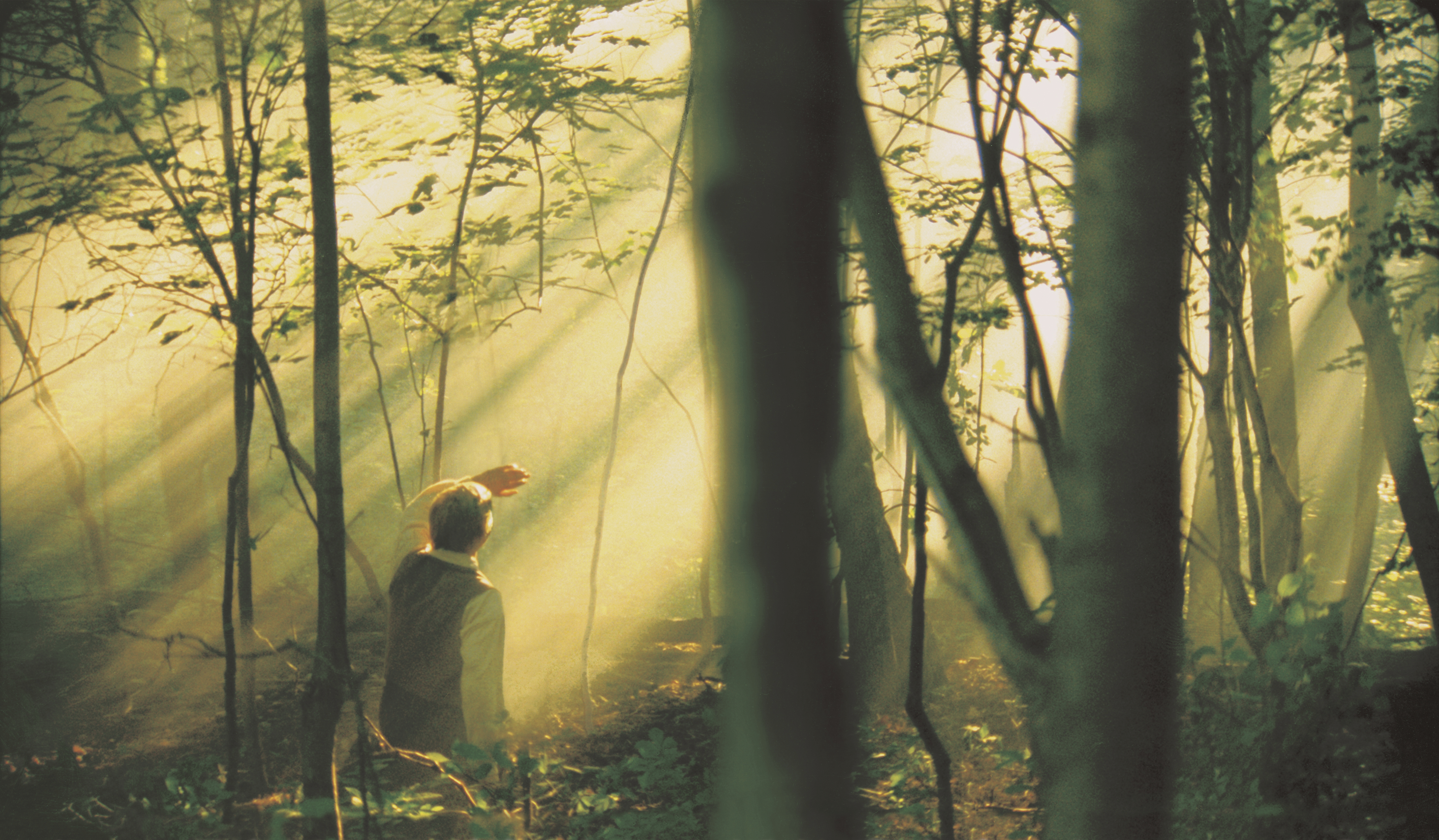 Joseph Smith Jr. kneeling in the Sacred Grove during the First Vision.