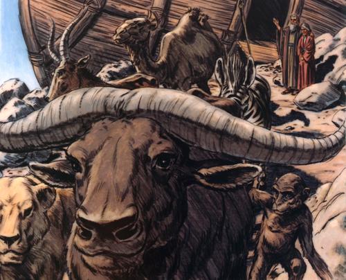 animals exiting ark