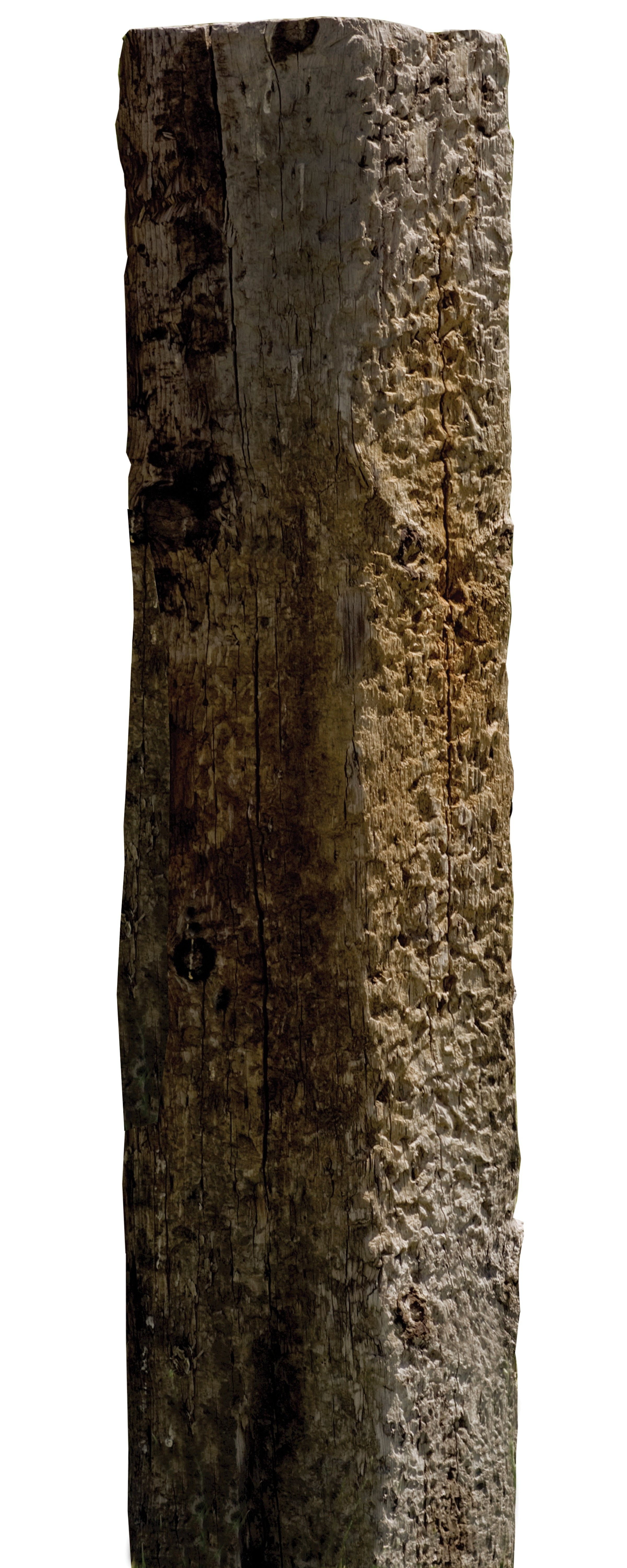 An old hewn oak beam or post.