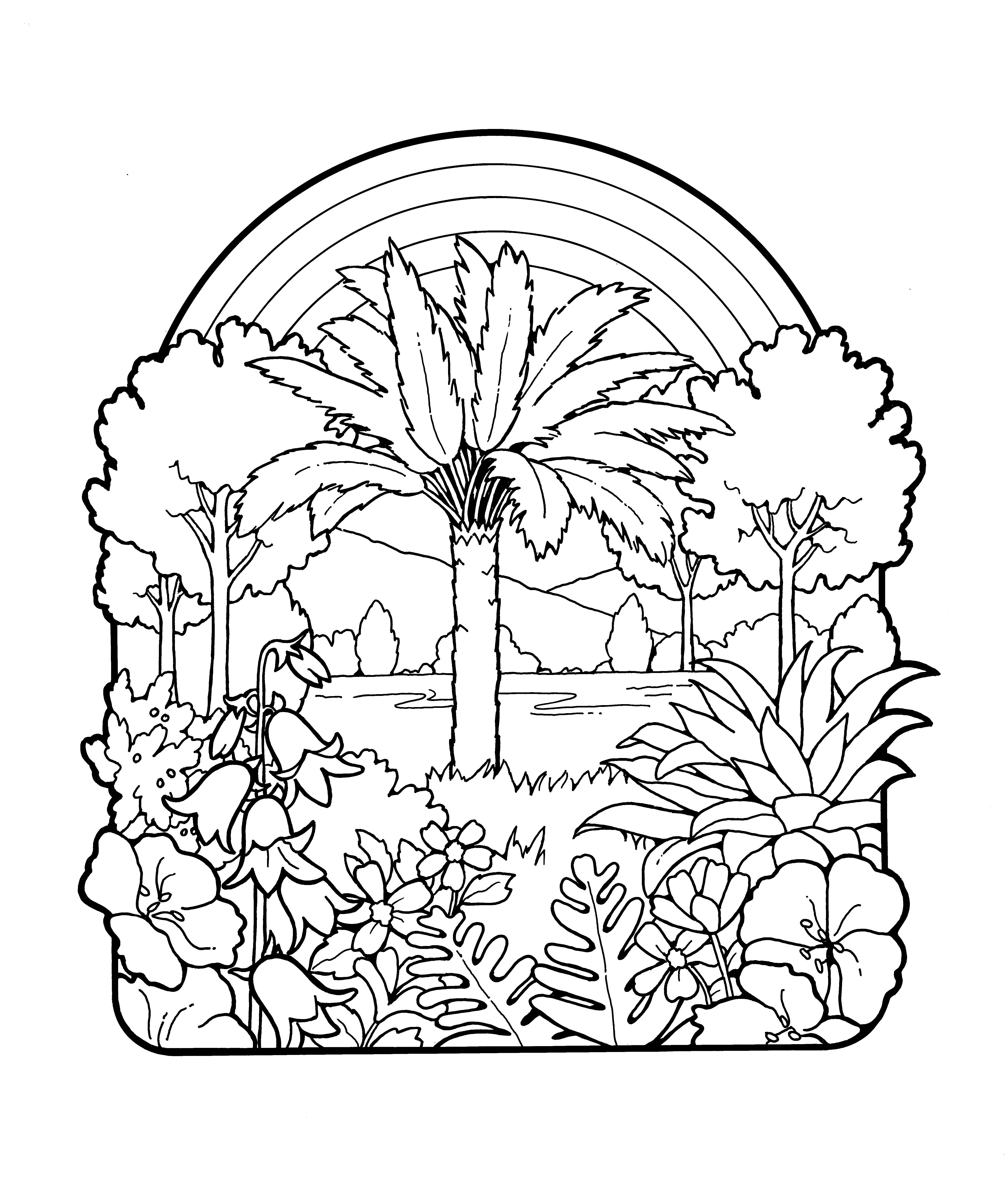 An illustration of plants and a rainbow.