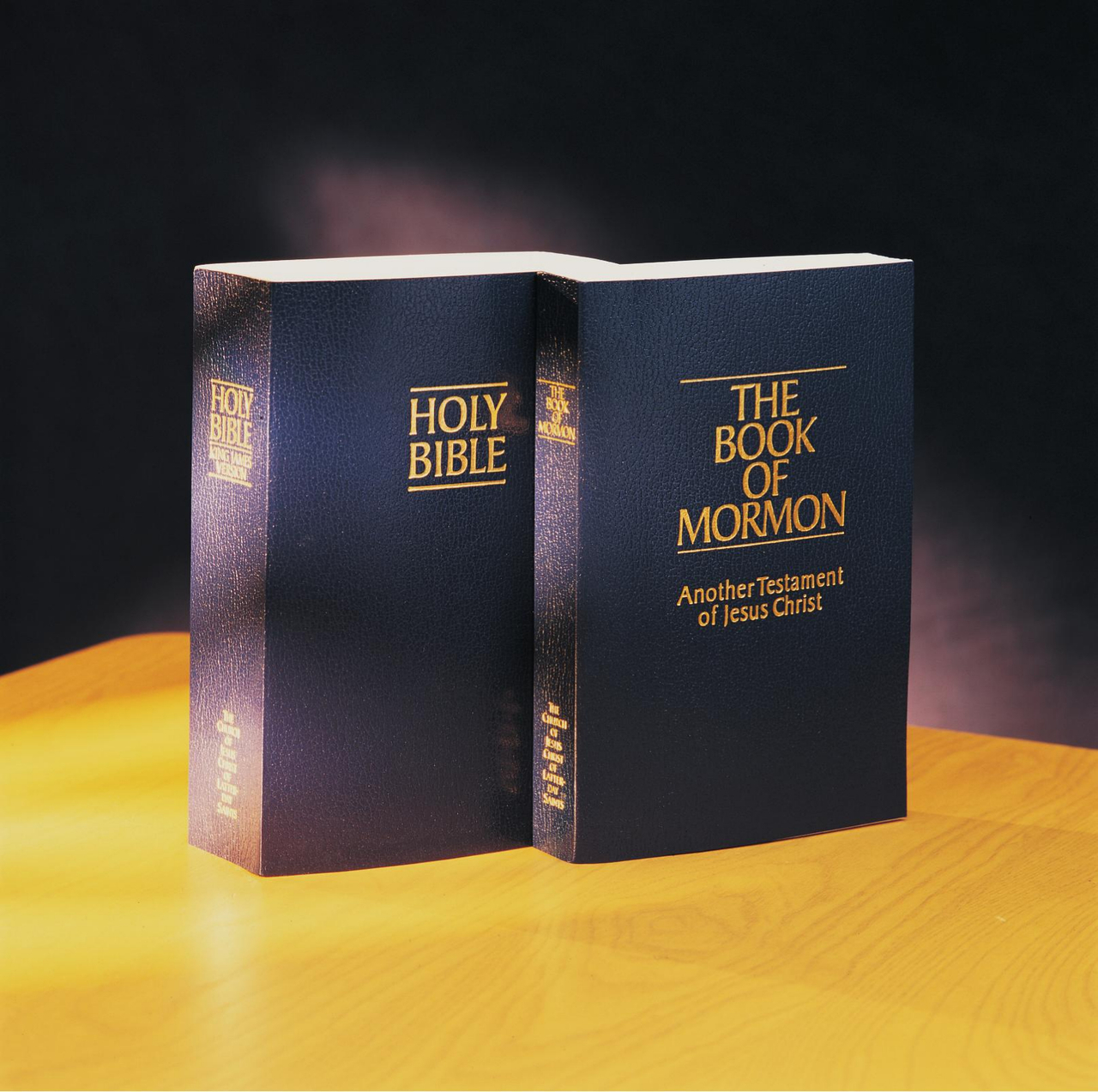 How The Bible and The Book of Mormon Work Together